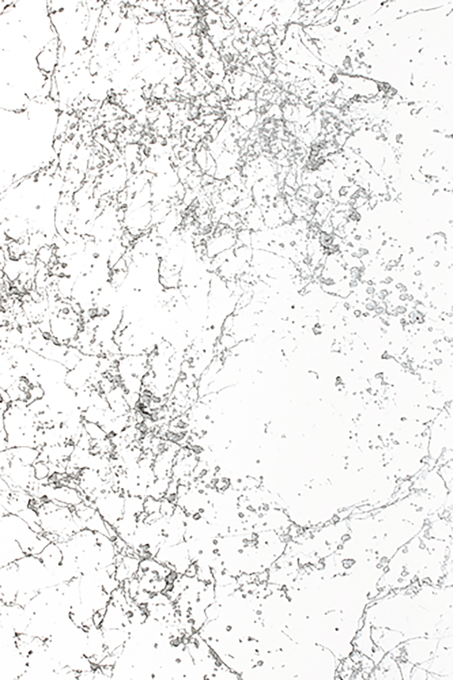 EFFECT_SPRAY_MARBLE_DETAIL-01